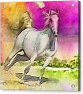 Horse Paintings 007 Acrylic Print