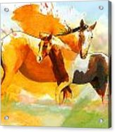 Horse Paintings 013 Acrylic Print