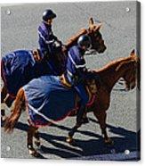 Horse Police Acrylic Print