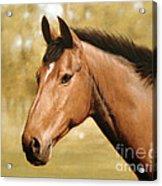 Horse Portrait II Acrylic Print by John Silver
