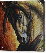 Horse Power Acrylic Print by Silvana Gabudean Dobre