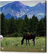 Horse Ranch Below The Peaks Acrylic Print