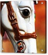 Horse Ride Acrylic Print