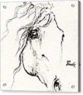 Horse Sketch 2014 05 24a Acrylic Print