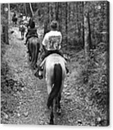 Horse Trail Acrylic Print by Frozen in Time Fine Art Photography