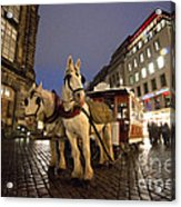Horse Tram Acrylic Print