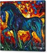 Horse Acrylic Print by Willson Lau