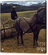 Horsedrawn Harvester Hay Rake On The Berta Ranch Carmel Valley California Circa 1950 Acrylic Print
