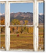 Horses And Autumn Colorado Front Range Picture Window View Acrylic Print by James BO  Insogna