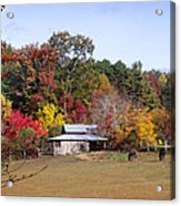 Horses And Barn In The Fall 2 Acrylic Print