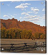 Horses In North Fork Canyon   #4106 Acrylic Print