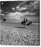 Horses On The Beach Bw Acrylic Print