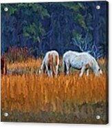 Horses On The March Acrylic Print