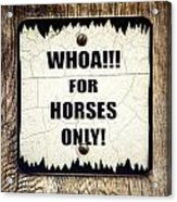 Horses Only Sign Picture Acrylic Print