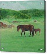 Horses Rural Pasture Western Landscape Original Oil Colorful Art Oregon Artist K. Joann Russell Acrylic Print