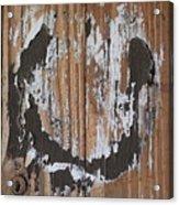 Horseshoe Print Wood Acrylic Print
