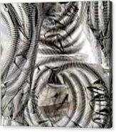 Hose And Plastic Acrylic Print by Dietrich ralph  Katz