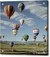 Hot Air Balloon Acrylic Print