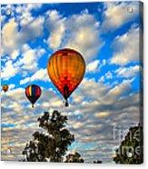 Hot Air Balloons Over Trees Acrylic Print