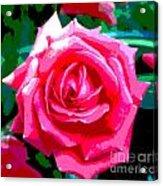 Hot Pink Rose Acrylic Print