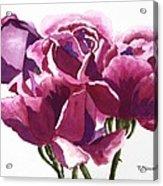 Hot Pink Roses Acrylic Print