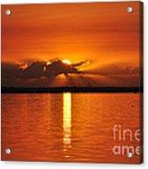 Hot Summer Sunrise  Acrylic Print
