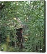 House In The Trees Acrylic Print