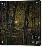 House In The Woods Acrylic Print