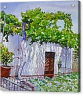 House With Vine In Lebanon Acrylic Print