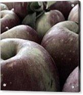 How Do You Like Them Apples Acrylic Print