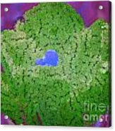 How Things Were Purple Green Blue Acrylic Print