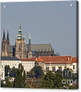 Hradcany - Cathedral Of St Vitus On The Prague Castle Acrylic Print