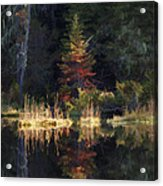 Huff Lake Reflection Acrylic Print