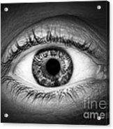 Human Eye Acrylic Print by Elena Elisseeva