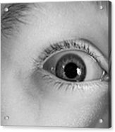 Human Eye, Infrared Image Acrylic Print by Science Photo Library