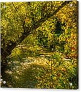 Humber River 5 Acrylic Print