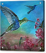 Hummers For A Friend Acrylic Print