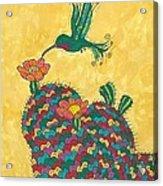 Hummingbird And Prickly Pear Acrylic Print