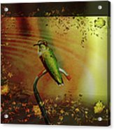 Hummingbird At The Pond Acrylic Print