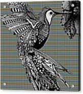 Hummingbird Flight 21 Acrylic Print