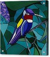 Hummingbird Hamlet Acrylic Print