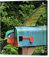 Hummingbird Mailbox Acrylic Print