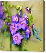 Hummingbirds Butterflies And Flowers Acrylic Print