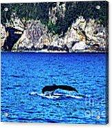 Humpback Whale Alaska Acrylic Print