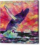 Humpback Whale Digital Color Acrylic Print