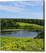Hunter River Beauty Acrylic Print