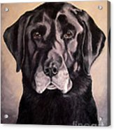 Hunting Buddy Black Lab Acrylic Print