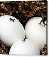 Hunting In Nest Little People On Food Acrylic Print