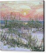Hunting Island Sea Oats Acrylic Print