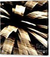 Huron Ohio Fireworks 8 Acrylic Print by Jackie Bodnar